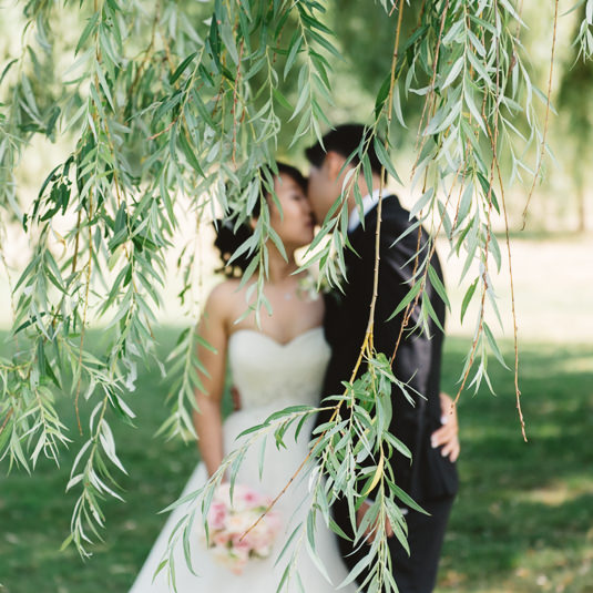 EightyFifth-Street-Photography_Kissing_Behind_WIllow_Trees