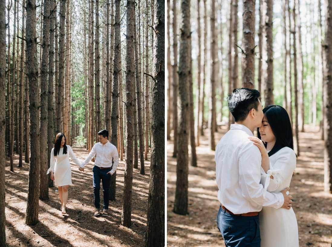 kortright conservation engagement photos, woodbridge | engagement photo locations in vaughan | eightyfifth street photography