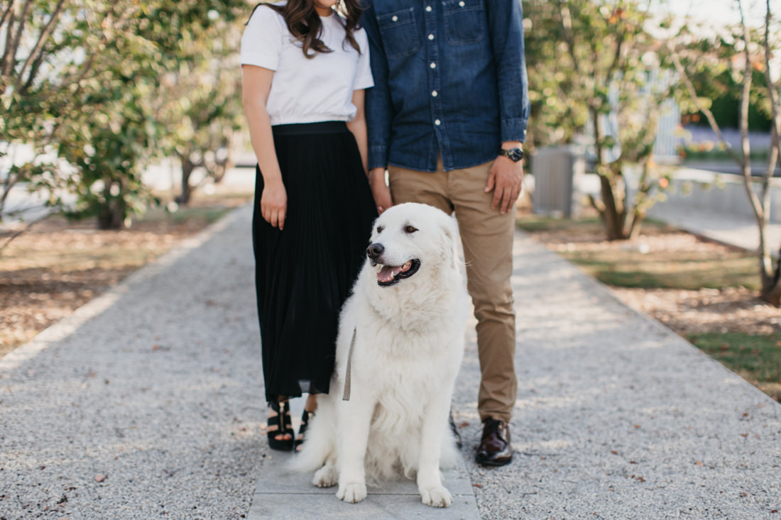 Engagement photo with pet dog | Toronto Wedding Photographer | EightyFifth Street Photography